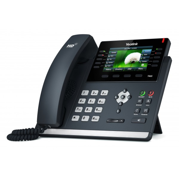 Bludog Telecom provides IP phones for businesses.
