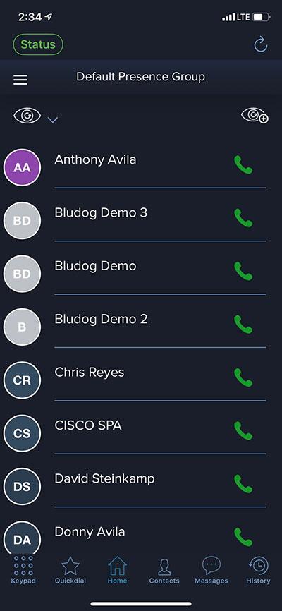 Remote telecom services from Bludog Telecom in Camarillo